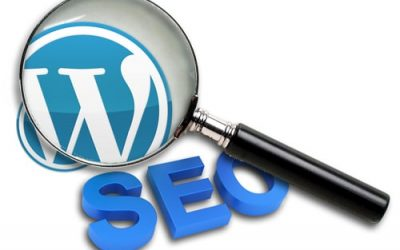 Posizionamento SEO WordPress